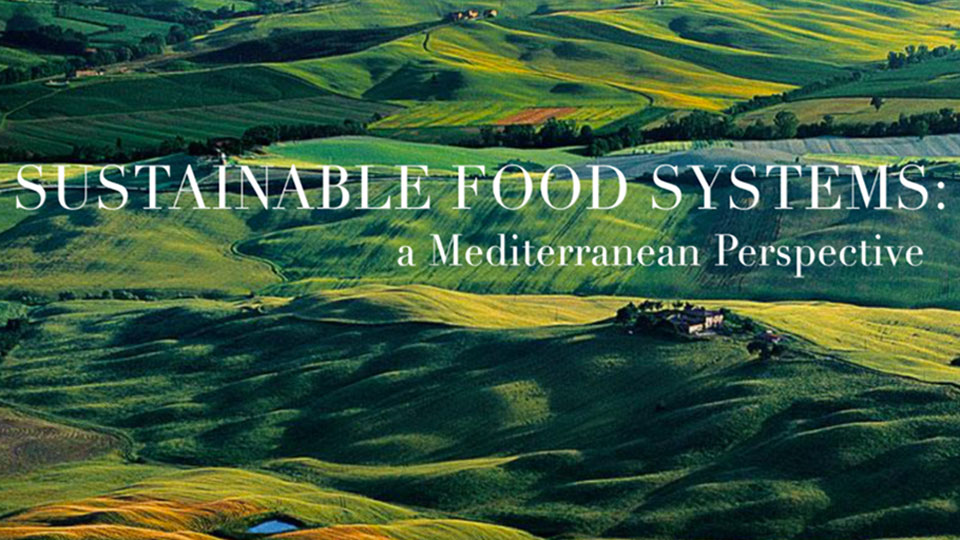 "SDG Academy: ""Course on Sustainable Mediterranean Food Systems"""