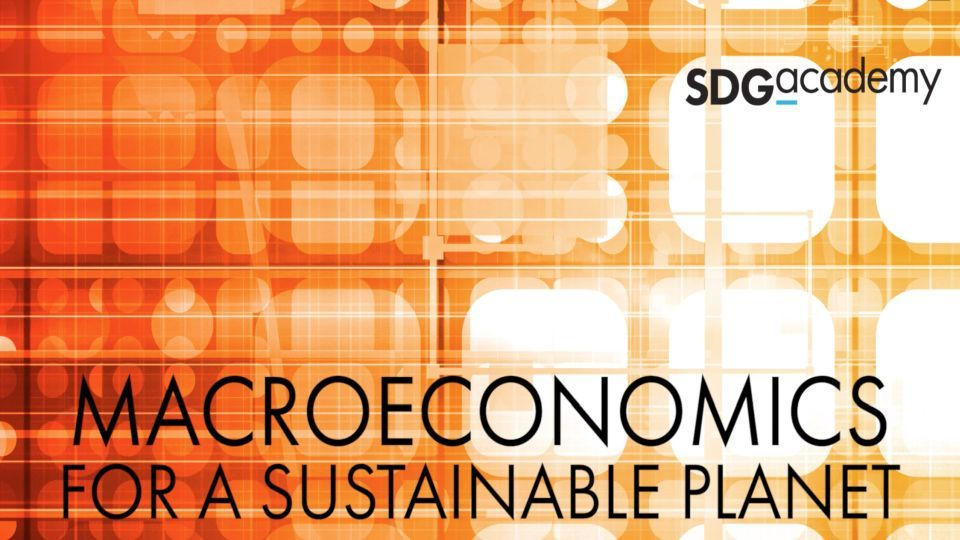 "SDG Academy: Kurs zu ""Macroeconomics for a Sustainable Planet"""