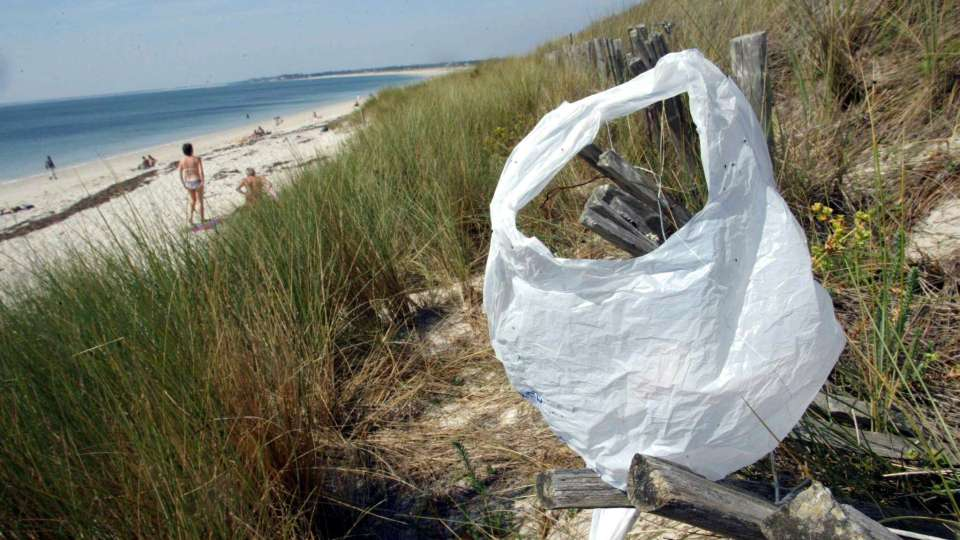 Fantastic plastic? The fate of the plastic bag